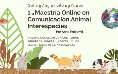Maestría online en Comunicación Animal Interespecies